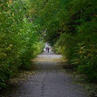 Осенняя..., Волжский