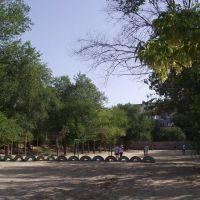 Школьная спортивная площадка. Фото Павла Морозова, Городище