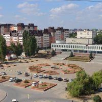Площадь, Городище