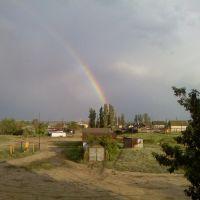 После дождя, Дубовка