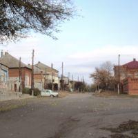 Боковая улица у Волгоградского водохранилища, Дубовка