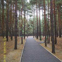 городской парк, Жирновск
