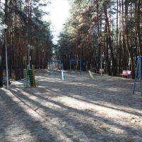 Городской Парк. Детская площадка. Октябрь 2010г., Жирновск