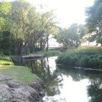 река Иловля, Иловля