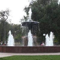 Фонтан в парке, Камышин