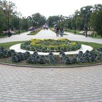 Парк культуры и отдыха им. Комсомольцев-добровольцев, Камышин