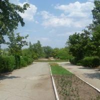 Парк, Камышин