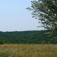 Русский пейзаж, Клетский