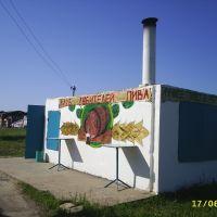Без коментариев!, Михайловка