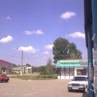 вороны у вокзала, Нехаевский