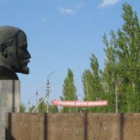 Голова, Николаевск