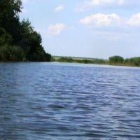 Левый берег реки Бузулук, Новоаннинский