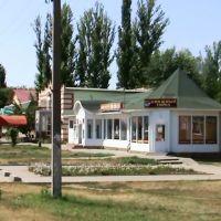 Книжный город., Новоаннинский