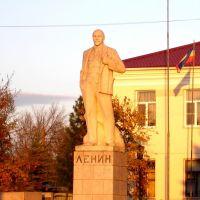 Ленин -Новоаннинский, Новоаннинский