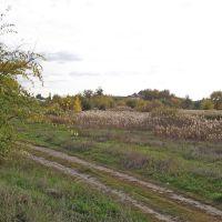 Лукоморье, Новоаннинский