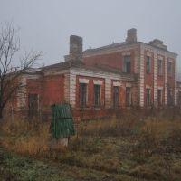 Здесь жизни нет....здесь бродят  призраки в тумане, Новониколаевский