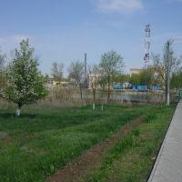 Парк, Палласовка