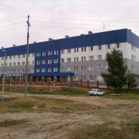 Больница, Палласовка