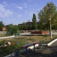 Детская музыкальная школа, Палласовка