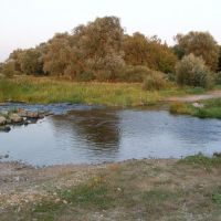 Бегучка.2011., Рудня