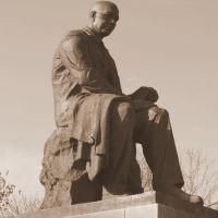 Памятник Серафимовичу, Серафимович