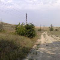 die Steppe, Сталинград