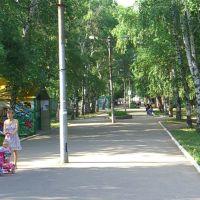 ГОРСАД  центральная аллея, Урюпинск
