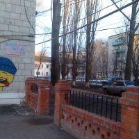 вид на двор Советская 80, Фроловская 1, Фролово