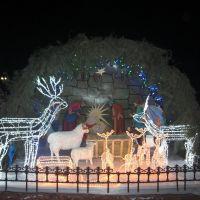 Рождественский вертеп во Фролово, Фролово
