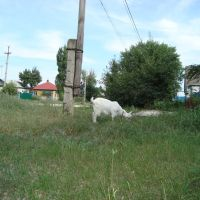 17.07.11 Урицкого - Подгорная, Фролово