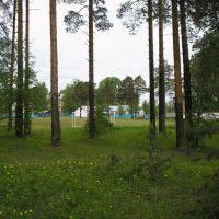 Стадион, Бабаево