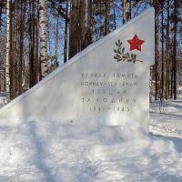 памятник Отечественной Войны 1941г., Бабаево