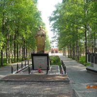 Памятник солдату, Вожега