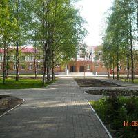 Районный дом культуры, Вожега