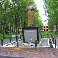 Памятник участникам ВОВ, Вожега