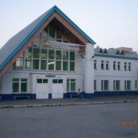 Станция Вожега, Вожега