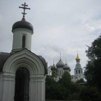 IMG_4551, Вологда