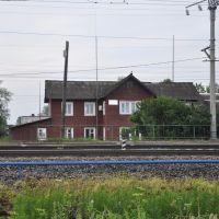 Станция Вохтога-2, поселок Вохтога, Вологодская область, Россия, Вохтога
