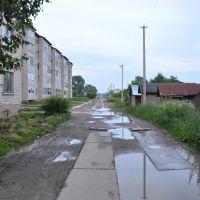 ул. Колхозная, поселок Вохтога, Вологодская область, Россия, Вохтога