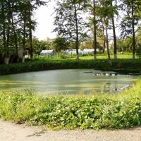 Сидоровский пруд, Грязовец