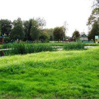 """""""Святой пруд"""" в парке, Грязовец"""