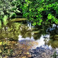 El río Voron. Kaduy, Кадуй