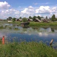 река Боровка/ river Borovka, Липин Бор