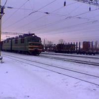 ст. Сухона (Suhona station), Сокол
