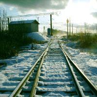 "Прошёл грузовой поезд. (около ст.""Сухона""). Freight train passed, Сокол"