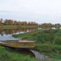 Устюжна. река Молога, Устюжна