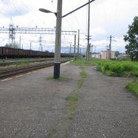 дорога на юг, Харовск