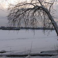 Река , практически, встала., Череповец