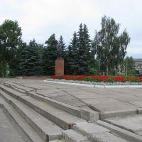 Памятник Ленину., Шексна