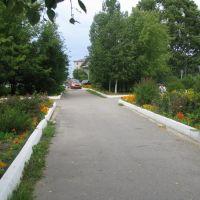 Скверик(garden), Шексна